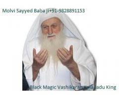 inter cast love marriage black magic specialist molv ji+91-9828891153